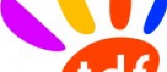 Television Mobile Personnelle : Le rapport de TDF